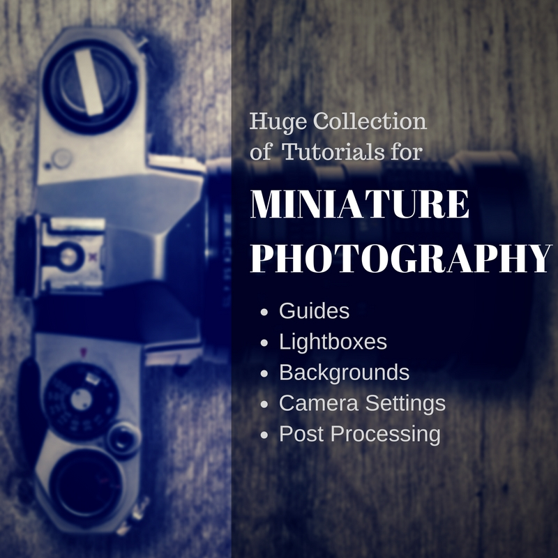 How to Photograph Your Mini